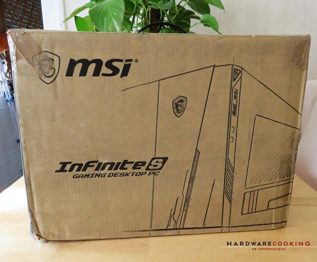 MSI Infinite S 9 carrton