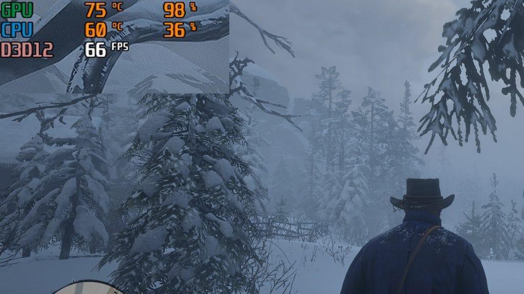Red Dead Redemption 2 FPS en jeu